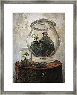 Terrarium Framed Print by Cynthia Decker