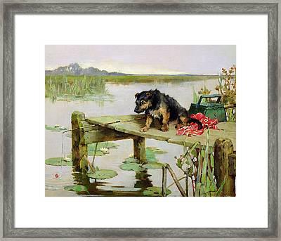 Terrier - Fishing Framed Print by Philip Eustace Stretton