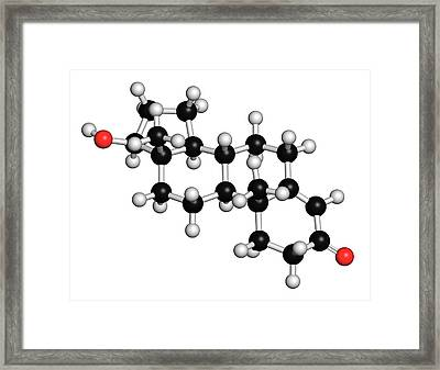 Testosterone Molecule Framed Print by Molekuul