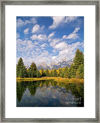 Teton Reflections Framed Print by Alex Cassels