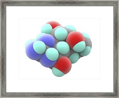 Tetrodotoxin Ttx Neurotoxin Molecule Framed Print by Alfred Pasieka
