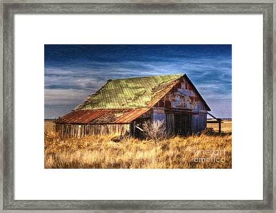 Texas Barn 1 Framed Print by DS Dodd