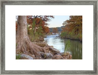 Texas Hill Country Images - Cypress Of Pedernales Falls 1 Framed Print by Rob Greebon