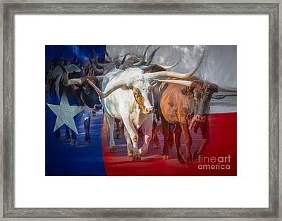 Texas Longhorns Framed Print by Inge Johnsson