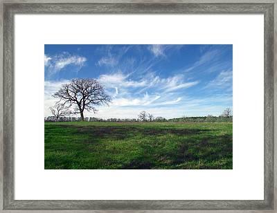 Texas Sky Framed Print by Brian Harig