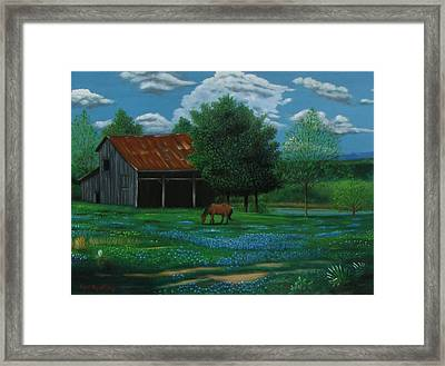 Texas Spring  Framed Print by Gene Gregory
