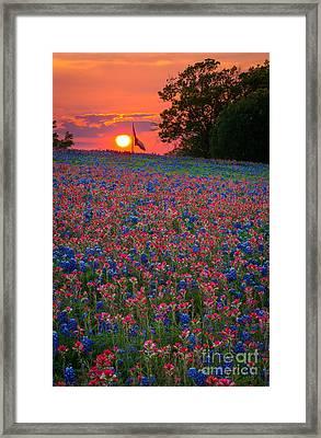 Texas Sunset Framed Print by Inge Johnsson