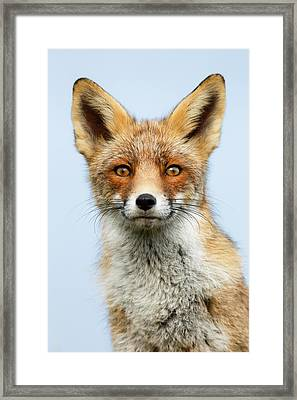 That Foxy Face Framed Print by Roeselien Raimond