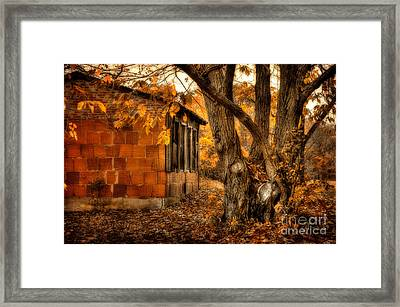 That Which Defines Us Framed Print by Lois Bryan