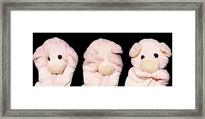 The 3 Wise Piggies Framed Print by Piggy