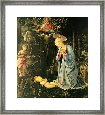 The Adoration In The Forest Framed Print by Mountain Dreams