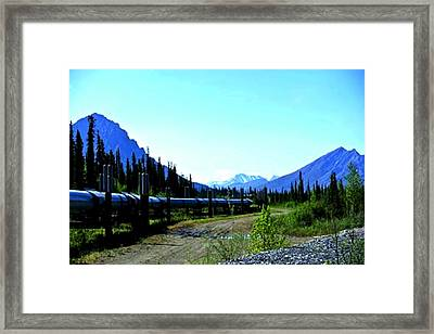 The Alaskan Pipeline Framed Print by Diane Strain