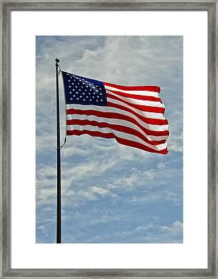 The American Flag Waving In The Wind Framed Print by LeeAnn McLaneGoetz McLaneGoetzStudioLLCcom