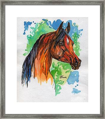 The Bay Arabian Horse 19 Framed Print by Angel  Tarantella