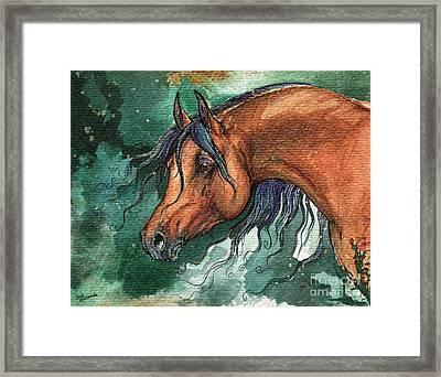 The Bay Arabian Horse 8 Framed Print by Angel  Tarantella