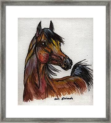 The Bay Horse 1 Framed Print by Angel  Tarantella