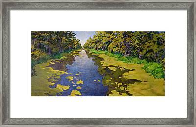 The Bayou Framed Print by Andrew Danielsen