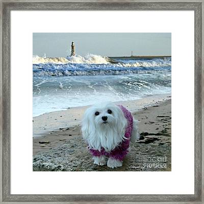 The Beach In Winter Framed Print by Morag Bates