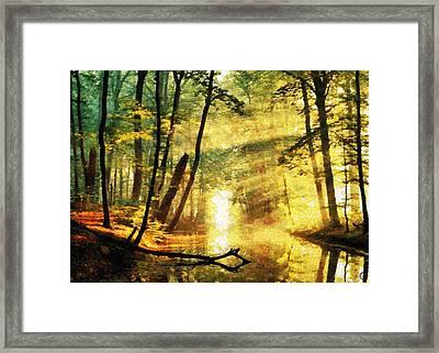 The Beautiful Face Of Autumn Framed Print by Gun Legler