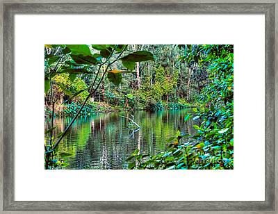The Beautiful Greens Of Nature 2 Framed Print by Kaye Menner