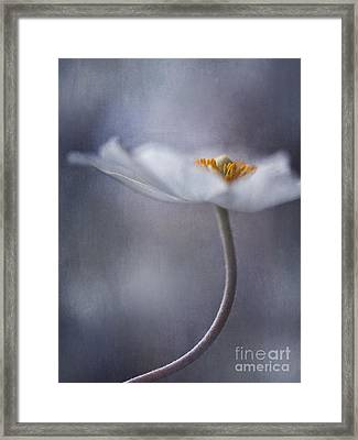 The Beauty Within Framed Print by Priska Wettstein