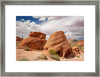 The Beehives Framed Print by Jane Rix