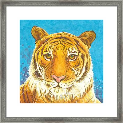 The Bengal Tiger Framed Print by Joyce Hensley