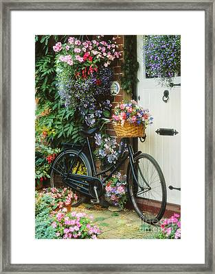 The Bicycle At Lavender Cottage Framed Print by MGL Meiklejohn Graphics Licensing