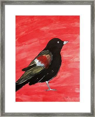 The Black Bird Framed Print by Gurkirat Gill