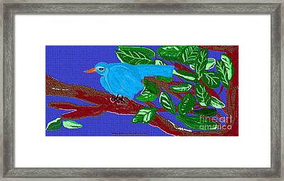 The Blue Bird Framed Print by Sherry  Hatcher
