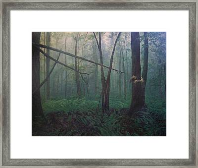 The Blue-green Forest Framed Print by Derek Van Derven