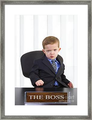 The Boss Framed Print by Diane Diederich