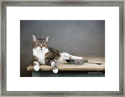 The Boss Framed Print by Nailia Schwarz
