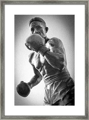 The Boxer Framed Print by Bob Caddick