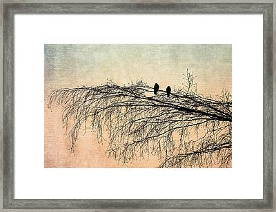 The Branch Of Reconciliation 2 Framed Print by Alexander Senin