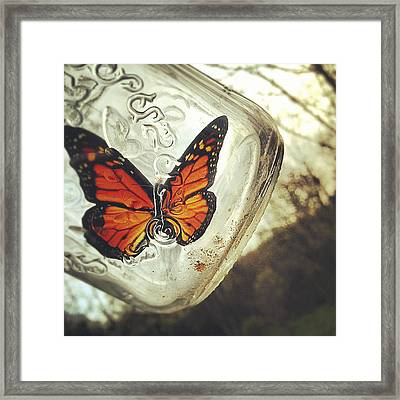 The Butterfly Framed Print by Carrie Ann Grippo-Pike