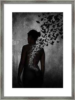 The Butterfly Transformation Framed Print by Nicklas Gustafsson