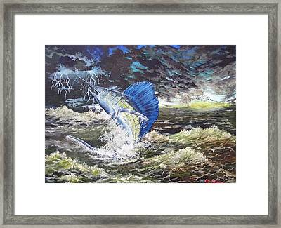 The Calm The Crazy The Sailfish Framed Print by Kevin F Heuman