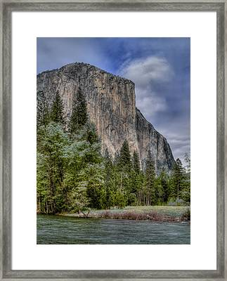 The Captain Framed Print by Bill Gallagher