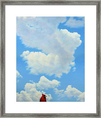 The Cardinal Framed Print by James W Johnson