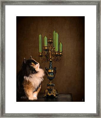 The Cat And The Candelabra Framed Print by Jai Johnson