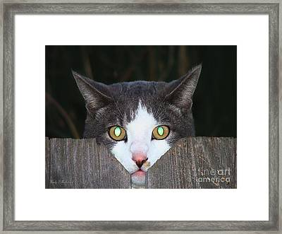 The Cat's Meow Framed Print by Wendy McKennon
