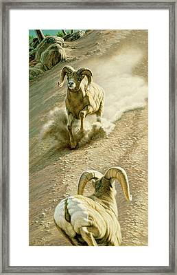 The Challenge Framed Print by Paul Krapf