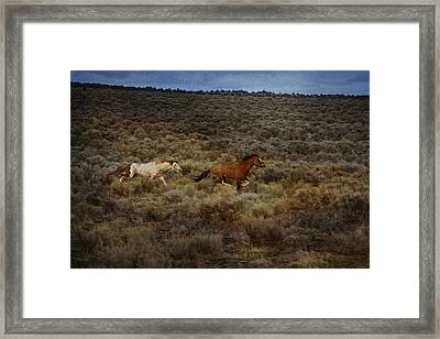 The Chase Is On D1215 Framed Print by Wes and Dotty Weber