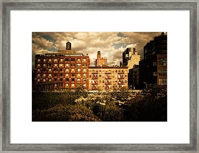 The Chelsea Skyline - High Line Park - New York City Framed Print by Vivienne Gucwa