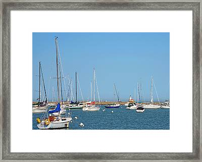 The Chicago Lighthouse Framed Print by Christine Till