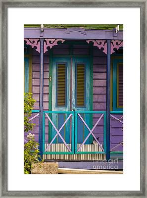 The Color Purple Framed Print by Rene Triay Photography