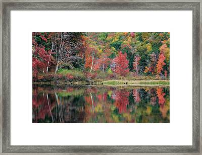 The Colors Of Autumn Framed Print by Bill Wakeley