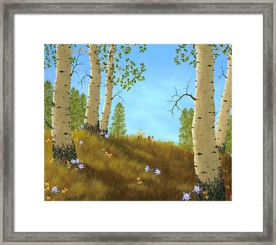 The Colors Of Nature Framed Print by Rick Bainbridge