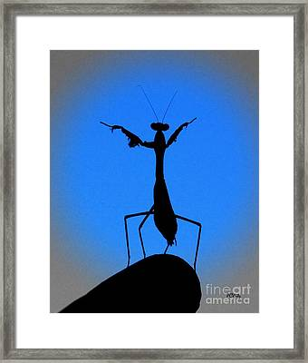 The Conductor Framed Print by Patrick Witz